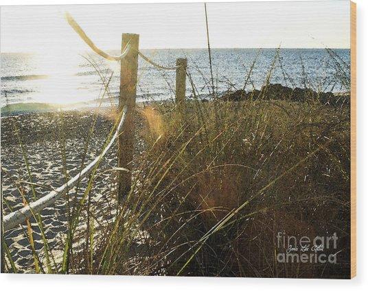 Sun Glared Grassy Beach Posts Wood Print