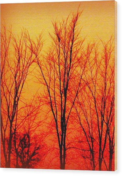 Sun Glow Wood Print