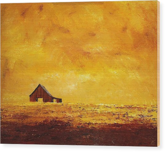 Sun Lit Barn Wood Print