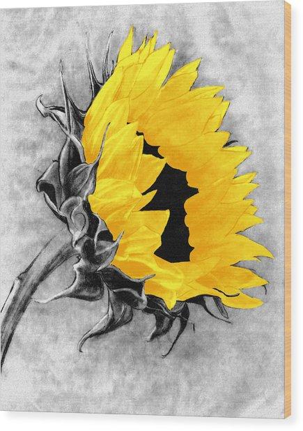 Sun Power Wood Print