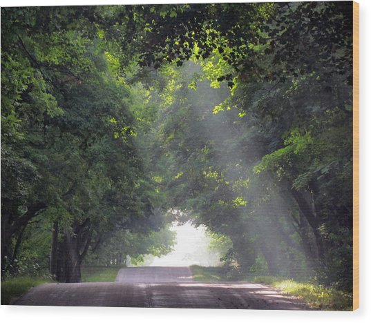 Sun Rays On Waters End Road Wood Print