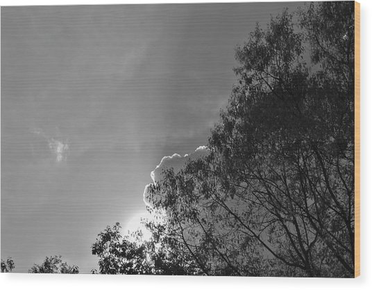 Sun Rays Wood Print by Thomas  MacPherson Jr
