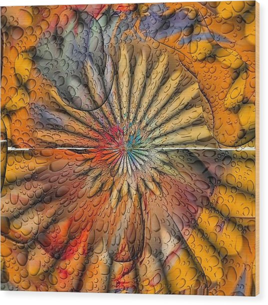 Sun Spin By Nico Bielow Wood Print