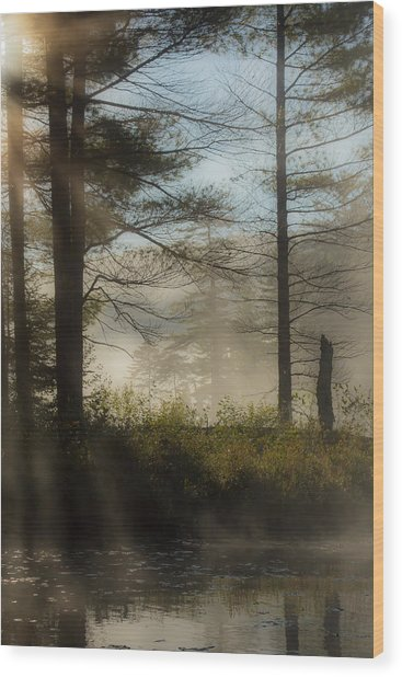 Sun Up At Lowell Lake 2 Wood Print