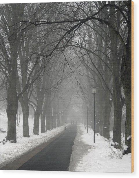 Sunday Afternoon Winter Wood Print