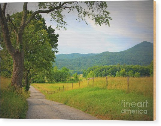 Hyatt Lane In Cades Cove Wood Print