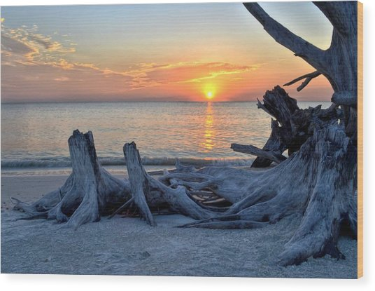 Sundown Wood Print by Bob Jackson
