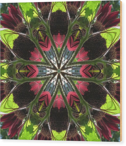 Sunflower And Green Leaf Wood Print