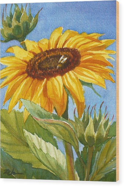 Sunflower And Honey Bee Wood Print