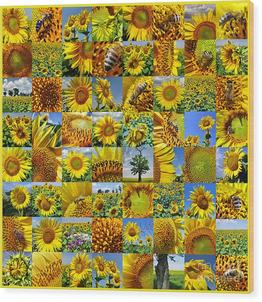 Sunflower Field Collage In Yellow Wood Print
