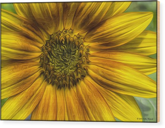 Sunflower In Oil Paint Wood Print