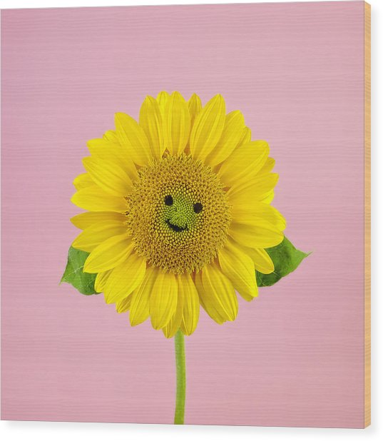 Sunflower Smiley Face Wood Print