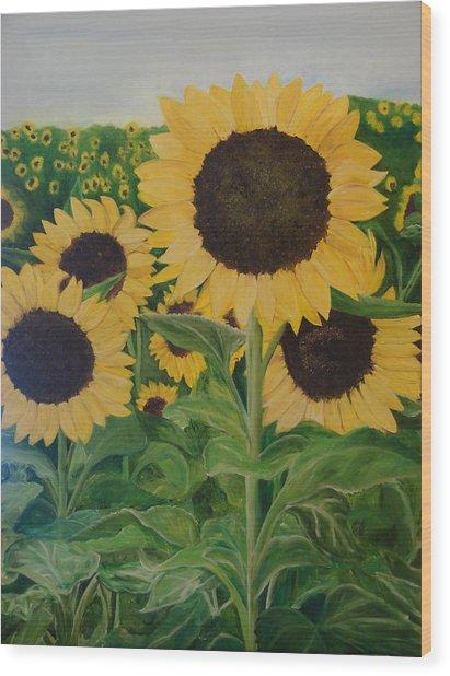 Sunflower Trail Wood Print by Shiana Canatella