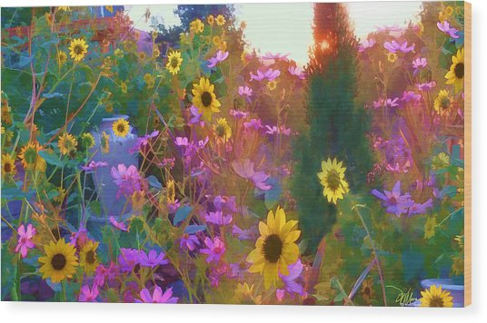 Sunflowers And Cosmos Wood Print