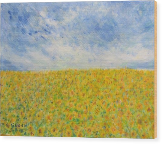 Sunflowers  Field In Texas Wood Print