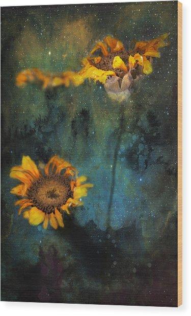 Sunflowers In Night Sky Wood Print
