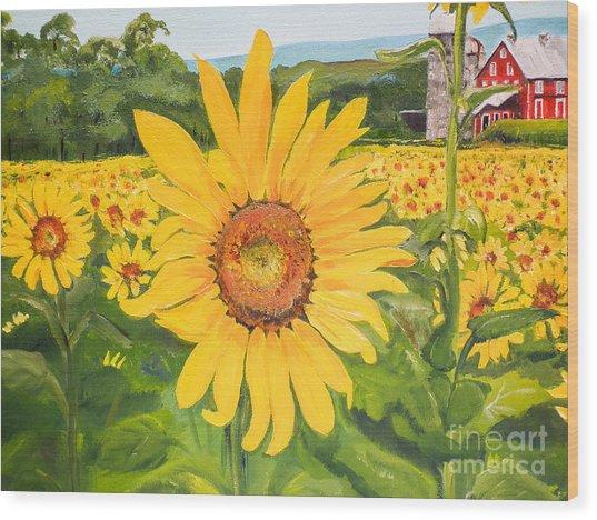 Sunflowers - Red Barn - Pennsylvania Wood Print