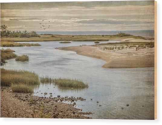 Sunken Meadow Wood Print