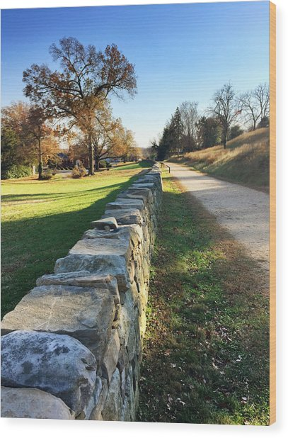 Sunken Road Wood Print