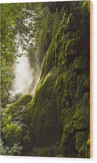 Gorman Falls Ray Of Light Wood Print