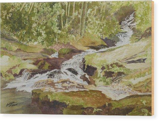 Sunlight Rocks And Water  II  Wood Print