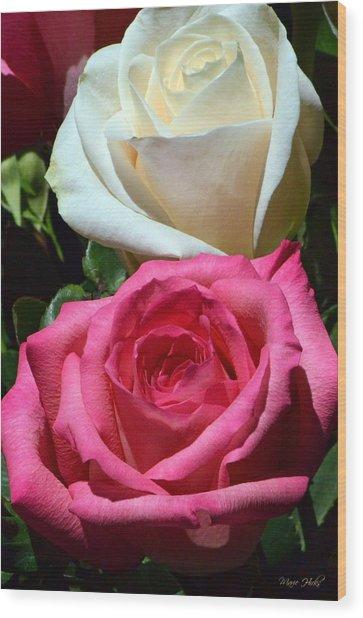 Sunlit Roses Wood Print