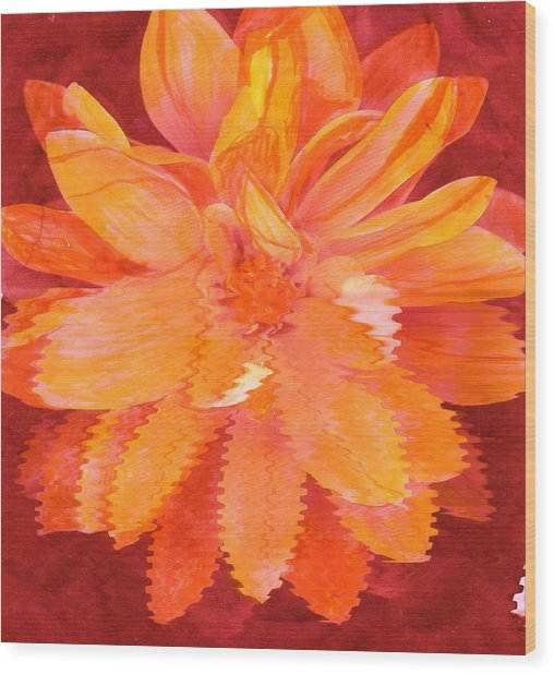 Sunny Burst Of Color Floral Wood Print by Anne-Elizabeth Whiteway