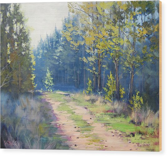 Sunny Corner Pine Forest Wood Print