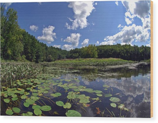 Sunny Day On The Merrimack Wood Print