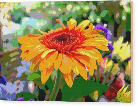Wood Print featuring the photograph Sunny Gerbera by Jocelyn Friis