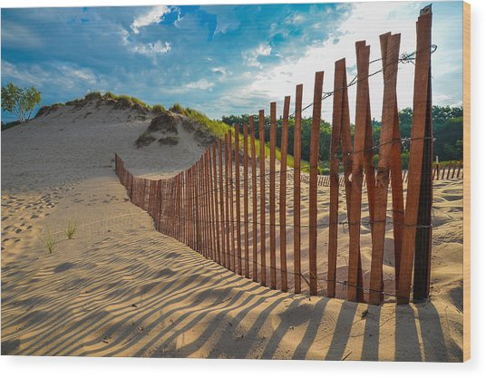 Sunny Morning On The Dunes Wood Print