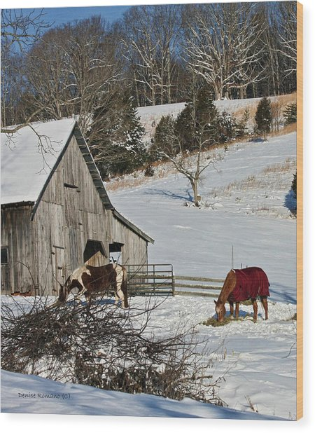 Sunny Snow Day Wood Print