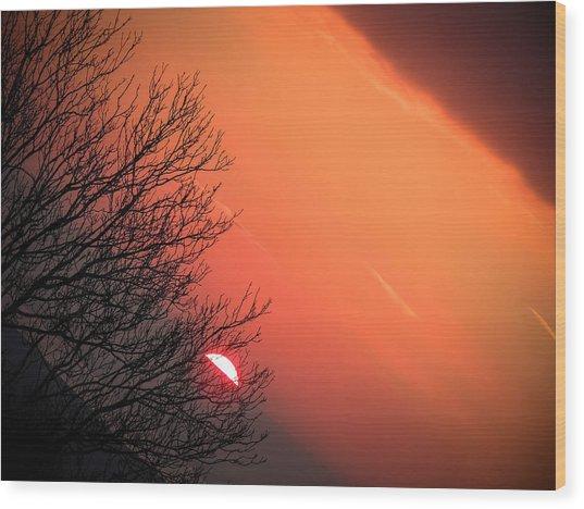 Sunrise And Hibernating Tree Wood Print