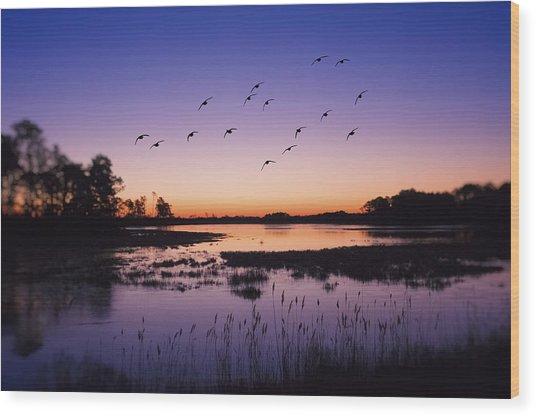 Sunrise At Assateague - Wetlands - Silhouette  Wood Print