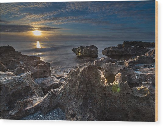 Sunrise At Coral Cove Park In Jupiter Wood Print
