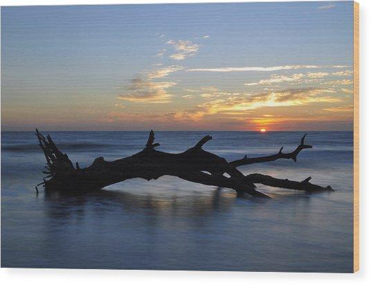 Sunrise At Driftwood Beach 7.2 Wood Print