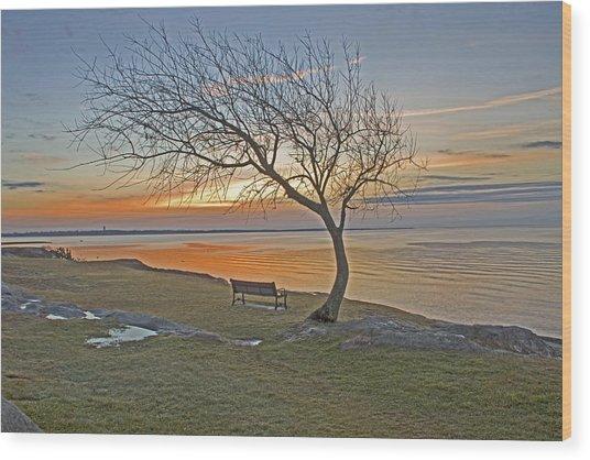 Sunrise At Fort Phoenix Wood Print