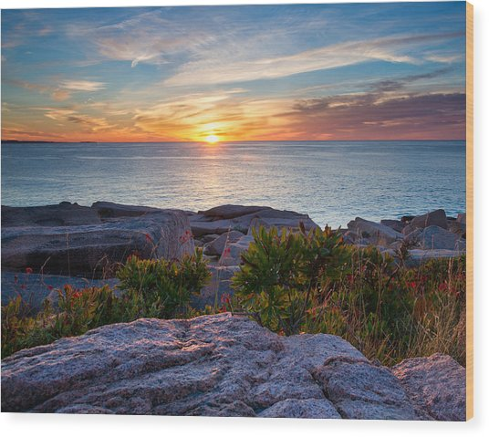 Sunrise At Otter Cliffs Wood Print