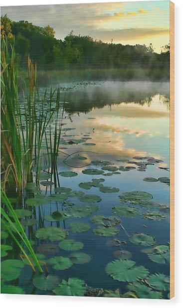 Sunrise At Pokagon State Park  Wood Print