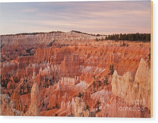 Sunrise At Sunset Point Bryce Canyon National Park Wood Print