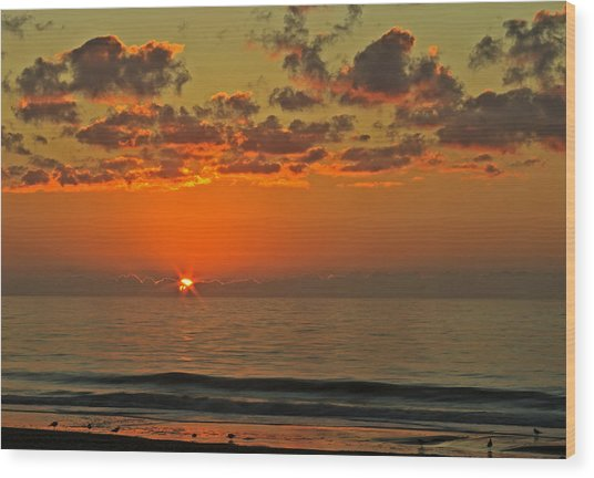 Sunrise At The Beach V Wood Print