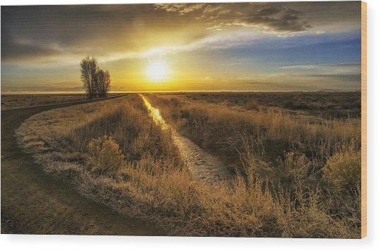 Sunrise At The Wildlife Refuge Wood Print by David Soldano