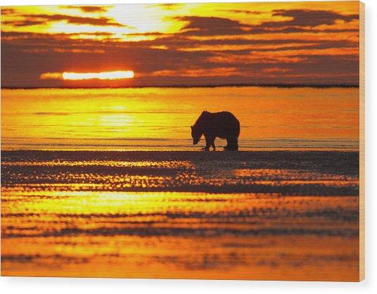 Sunrise Bear Wood Print