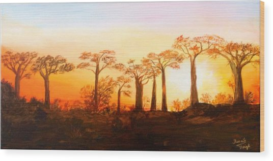 Sunrise Boab Trees Wood Print