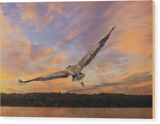 Sunrise Heron Wood Print