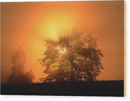 Sunrise In Fog Wood Print