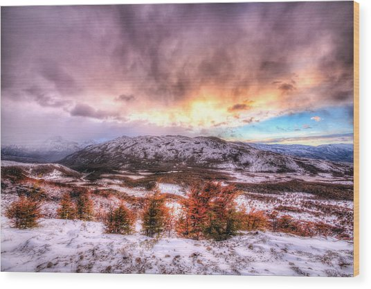 Sunrise In Patagonia Wood Print by Roman St