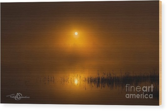 Sunrise In The Fog Wood Print