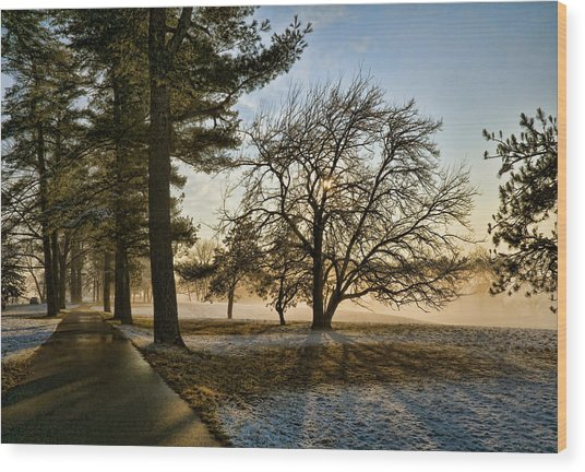 Sunrise In The Park Wood Print