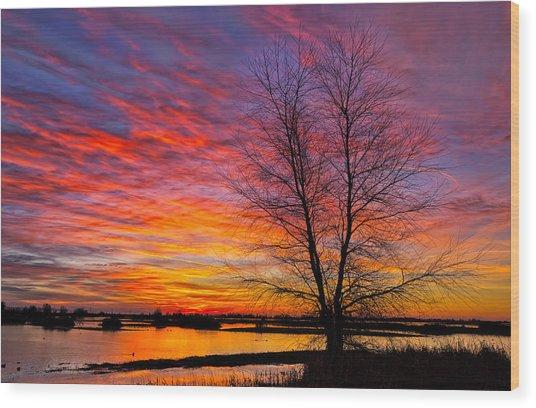 Sunrise In The Sacramento Valley Wood Print
